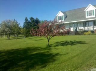 35.6 acres Alpena, MI