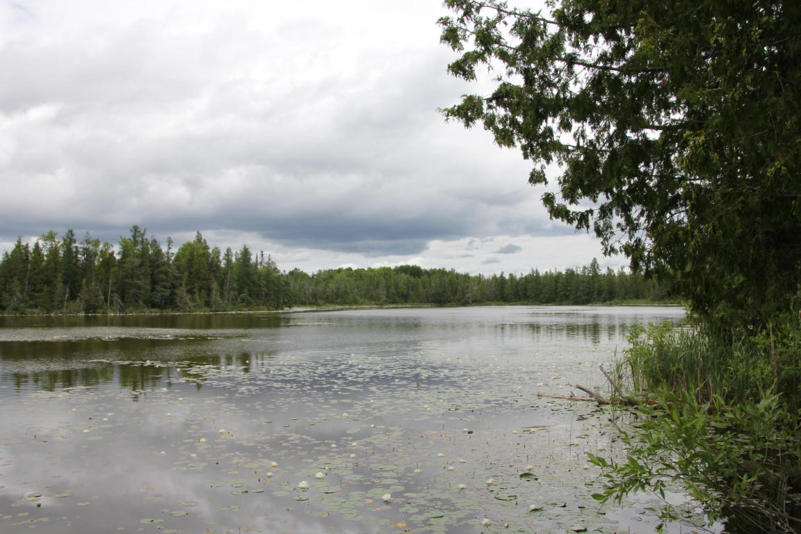 Image of  for Sale near Onaway, Michigan, in Presque Isle County: 98 acres
