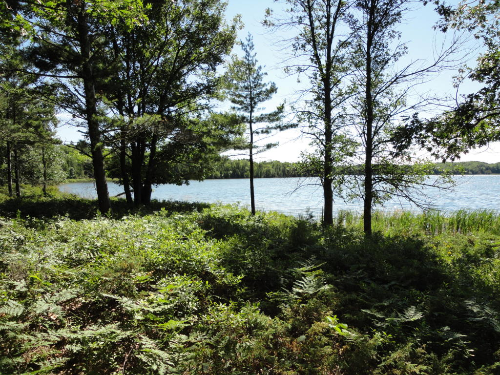 walloon lake single personals 2130 n shore dr, walloon lake, mi is a 2 bed, 1 bath single-family home available for rent in walloon lake, michigan.