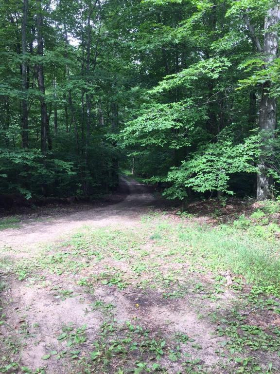 Kim Trail 9.26 Acres Gaylord, MI 49735