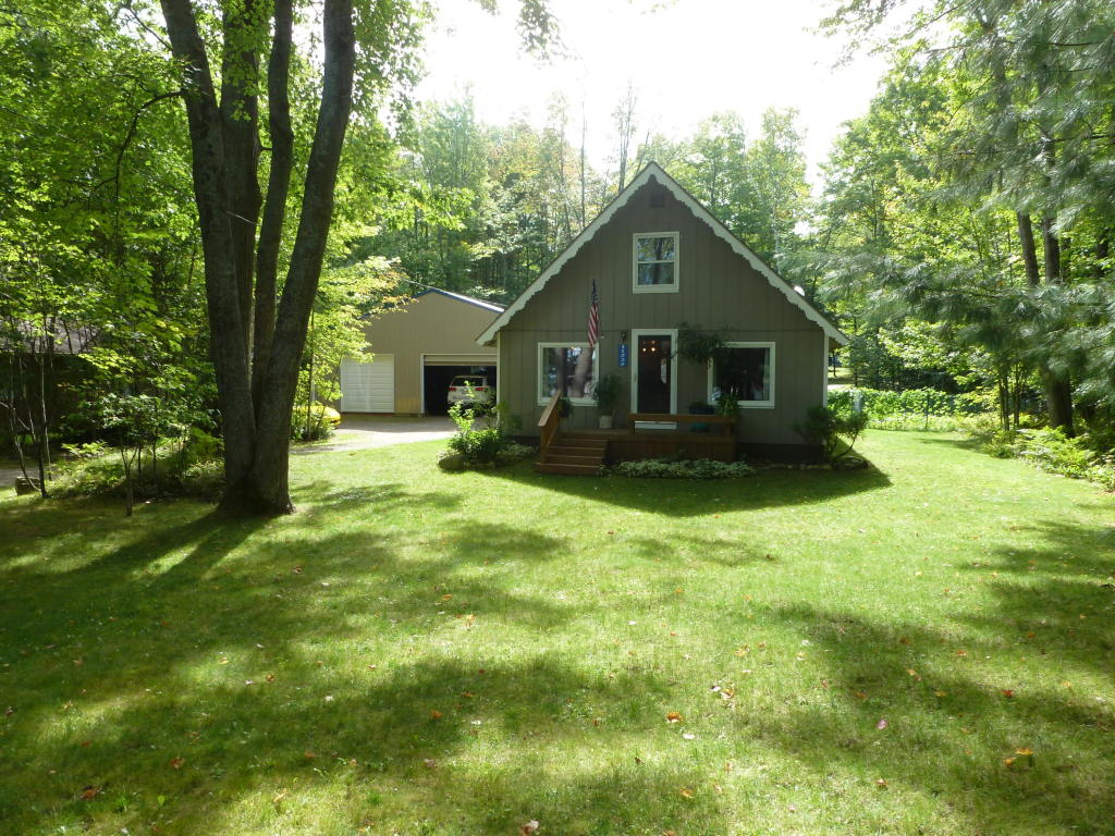 Photo of 11535 White Birch Drive  Pellston  MI