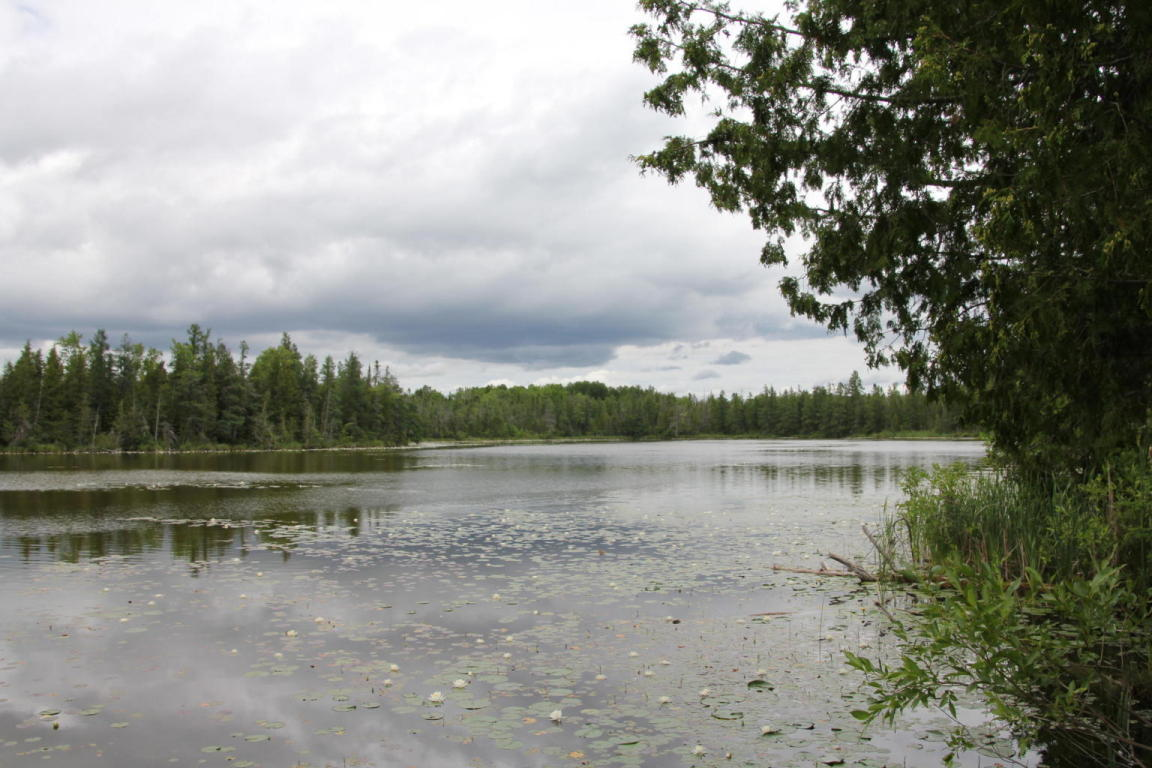 Image of  for Sale near Onaway, Michigan, in Presque Isle County: 40 acres