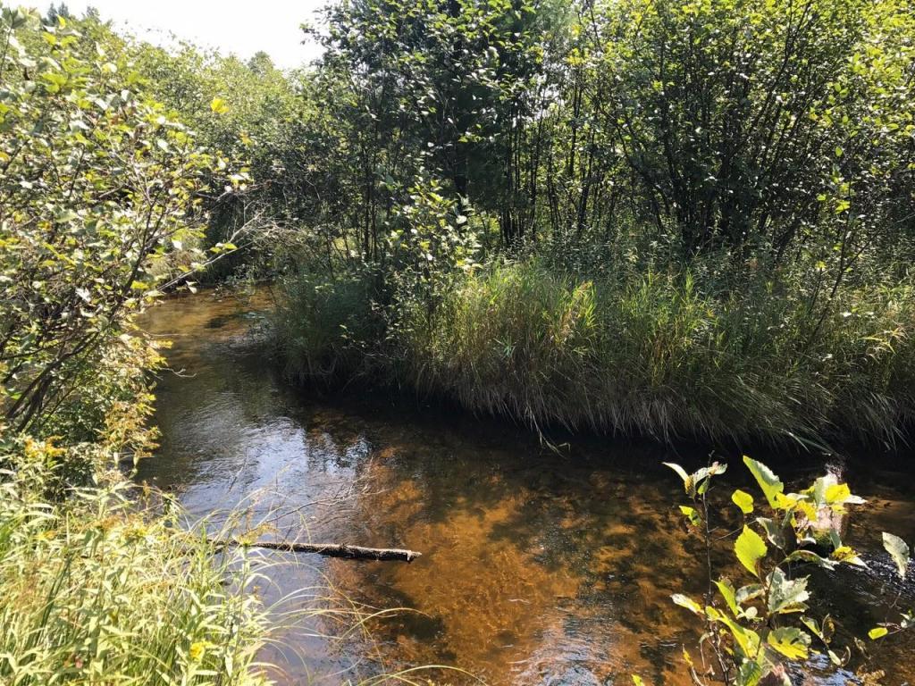 Photo of 4240 SW Boardman River Road  South Boardman  MI
