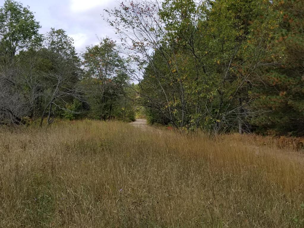 8430 Tittabawassee Trail Gaylord, MI 49735