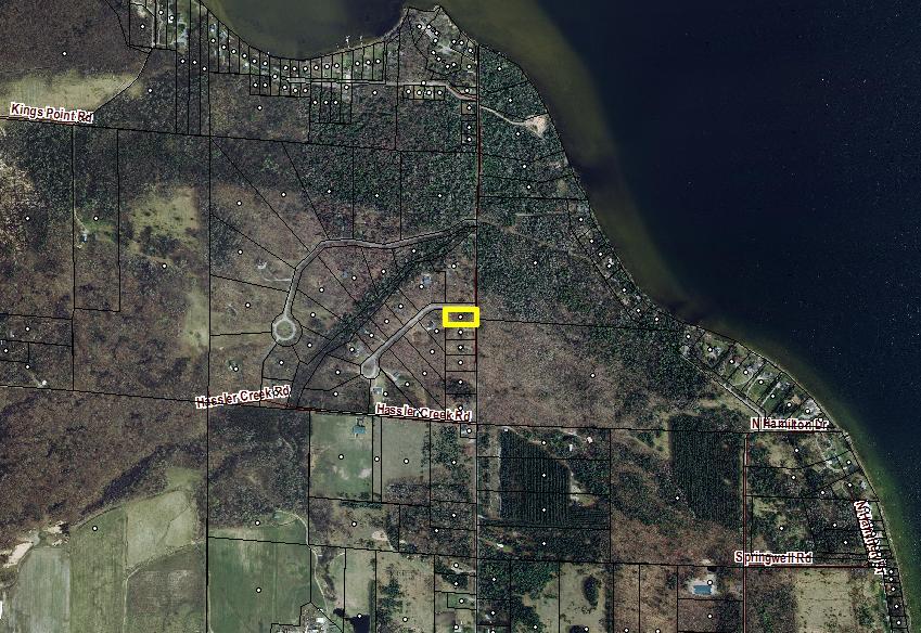 11131 Hassler Woods Trail Unit 33 Alanson, MI 49706