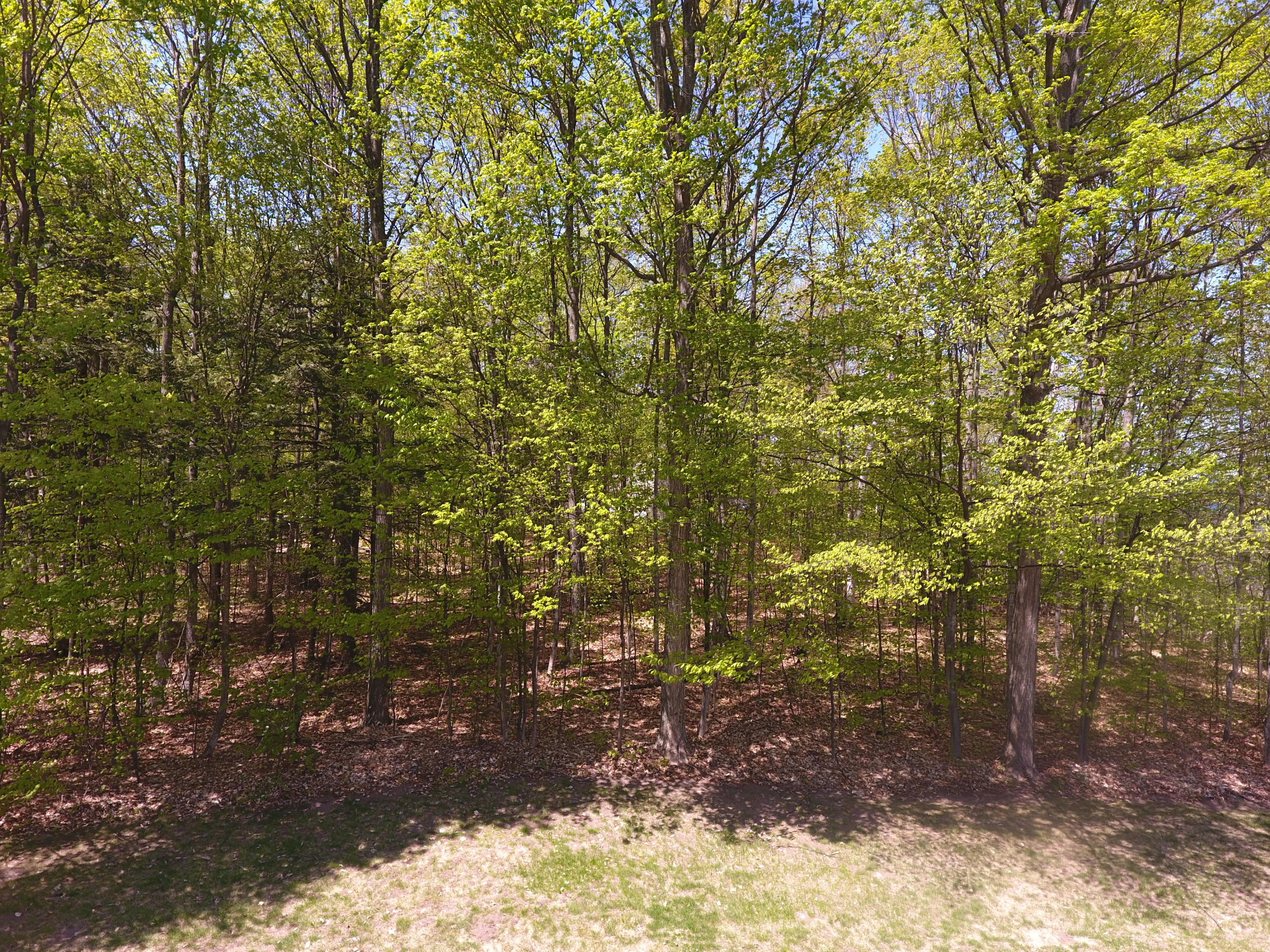 3206 Hidden Ridge Road Alanson, MI 49706